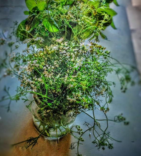 Herbes retouchées