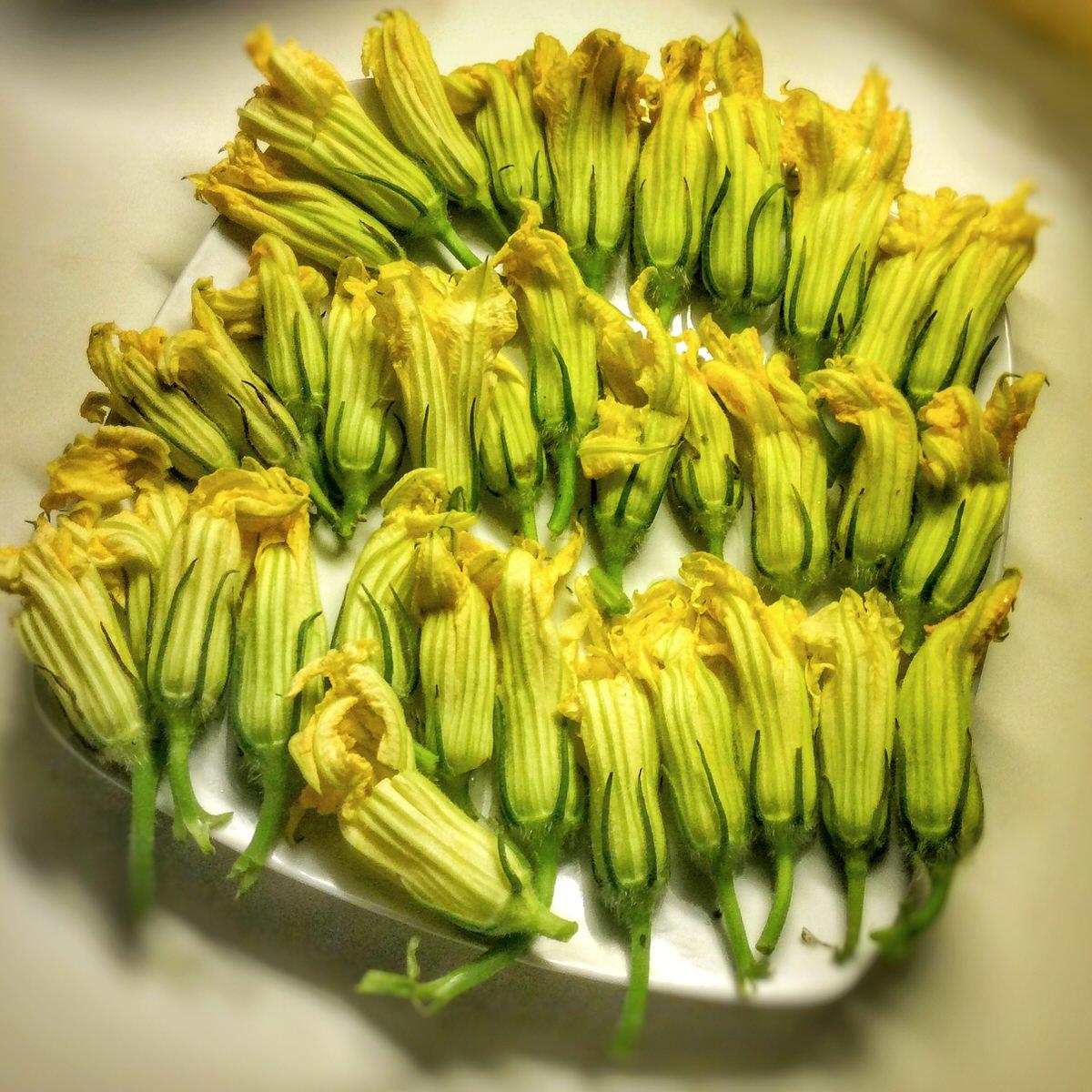 Tempura ou beignets de fleurs de courgettes vegan vegan freestyle - Beignets de fleurs de courgettes ...