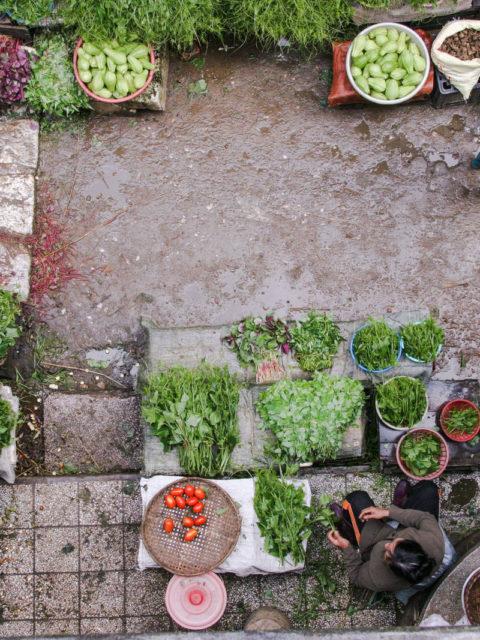 Manger local, bio et vegan en PACA