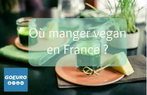 vegan freestyle go euro