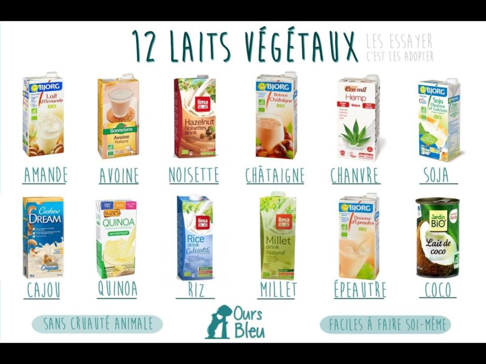 Comment remplacer les produits laitiers vegan freestyle for Vegetal en anglais