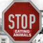 10 choses vegan