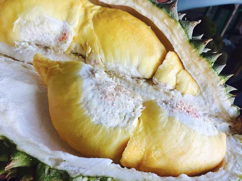cuisiner le jackfruit